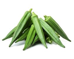 products-okra-cucumis